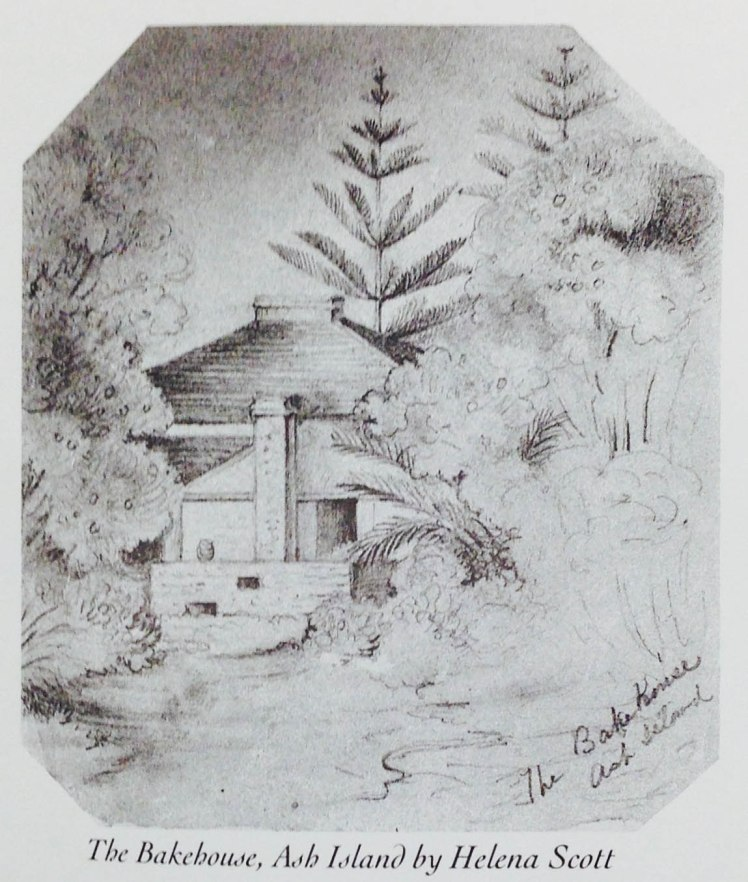 The Bakehouse, Ash Island by Helena Scott (Published by Marion Ord, from original in Australian Museum). Was this located at rear of homestead, compare the pines with the 1858-1861 engraving at top of page.