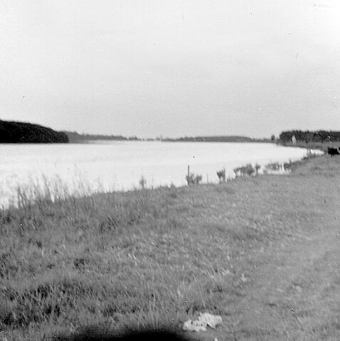 1970? - AW Scott Home - East from site of home. Cultivation area to right of Hunter River (Courtesy of Hunter Photobank)