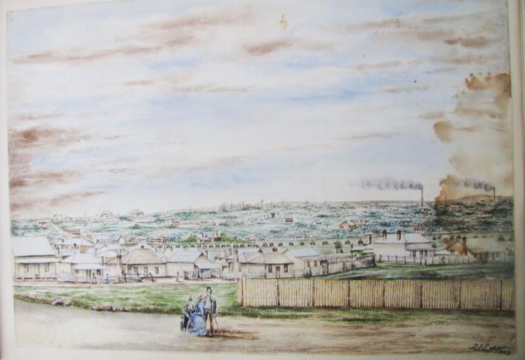 perrott-waratah-059
